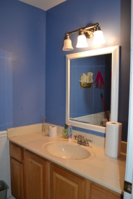 BEFORE - Bathroom Redesign